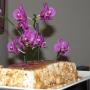 Tarta de capuchino al caramelo - Paso 2 de la receta