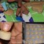 Tortas de manteca  - Paso 5 de la receta