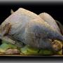 Pollo capón relleno - Paso 6 de la receta