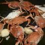 Arroz de cangrejos - Paso 1 de la receta